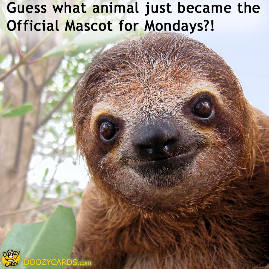 Funny Sloth Meme | Mon...