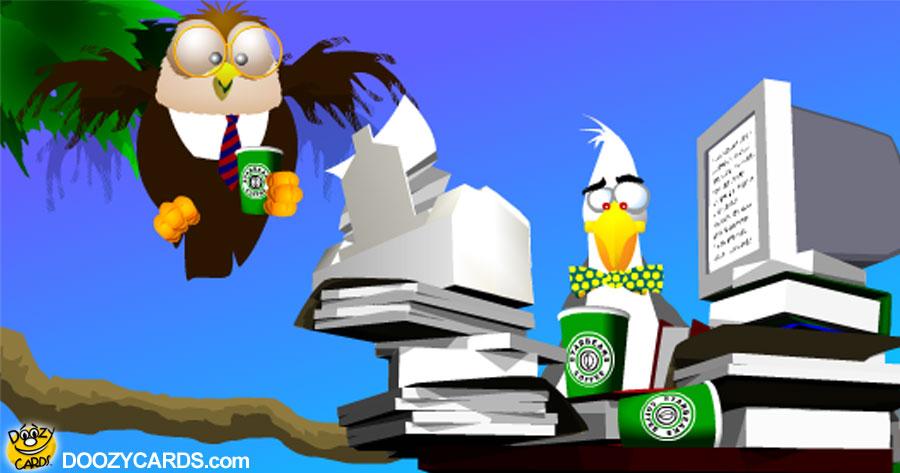 Bird Office Professionals