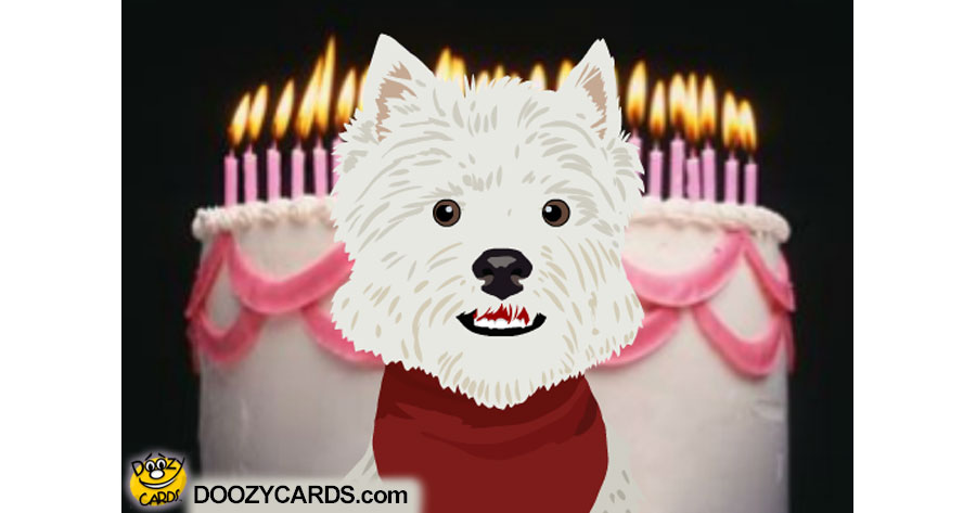 Talking B-day Terrier (Personalize)