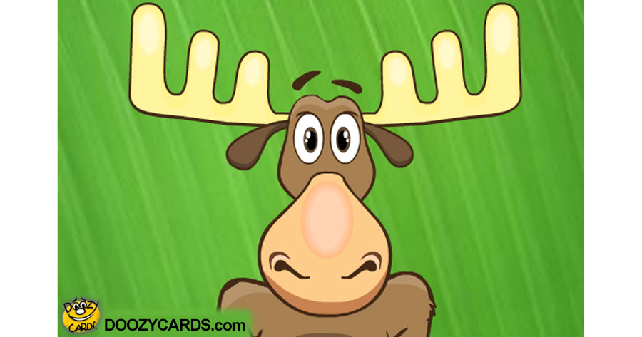 Talking Moose Ecard