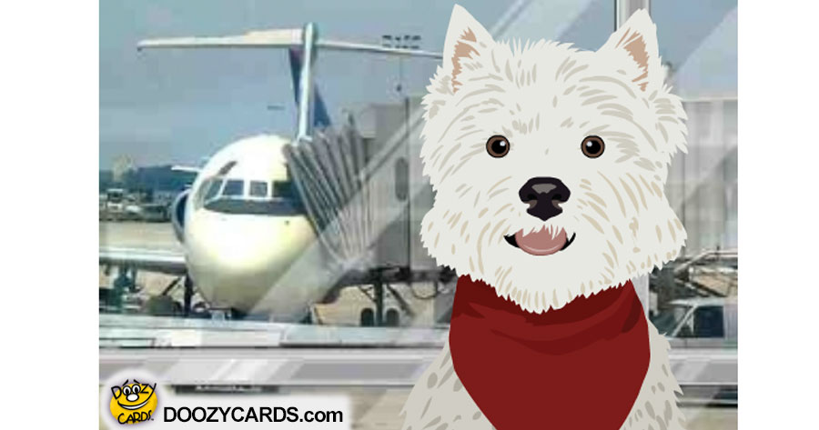Talking Travel Terrier ecard