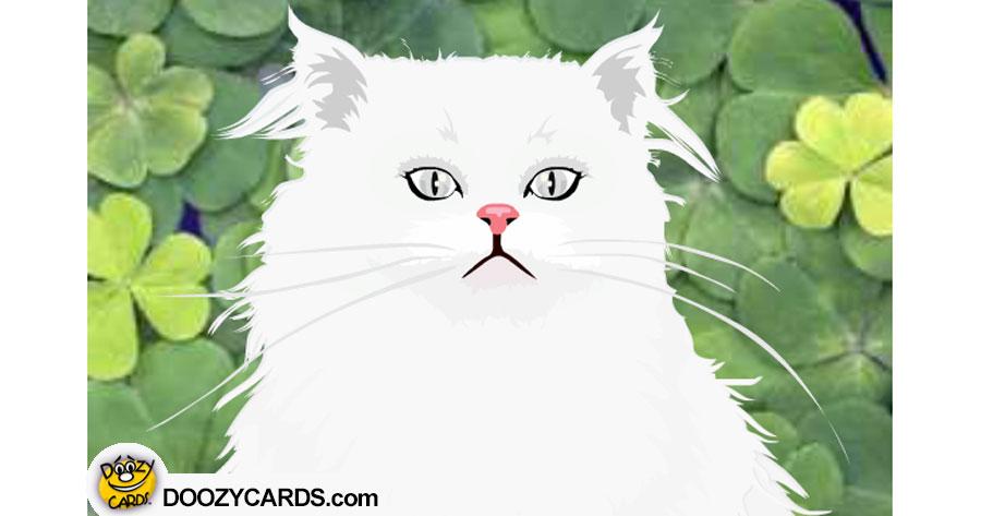Talking Irish Kitty (Personalize)