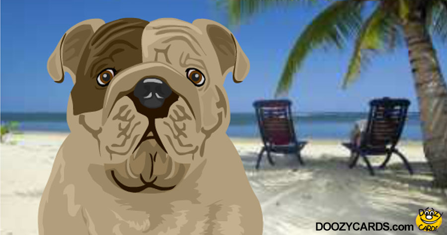 Talking Beach Bulldog