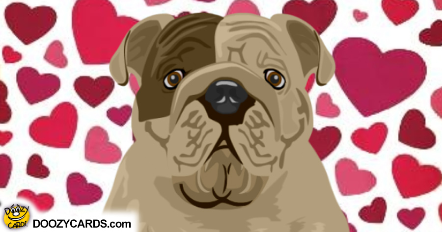 Talking Romantic Bulldog