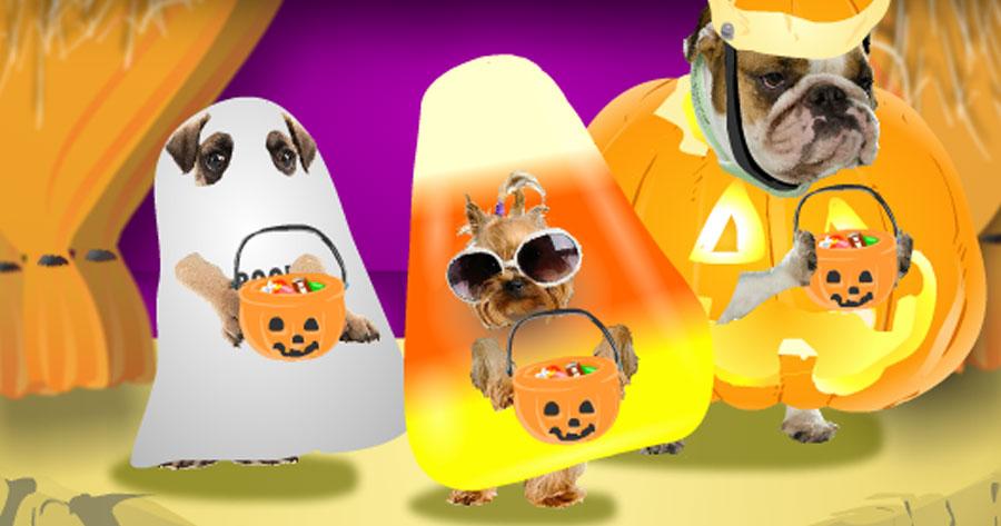 Dancing Halloween Doggies