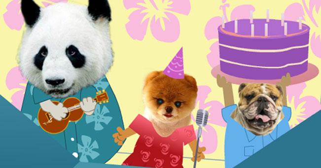 Panda et Chien Anniversaire