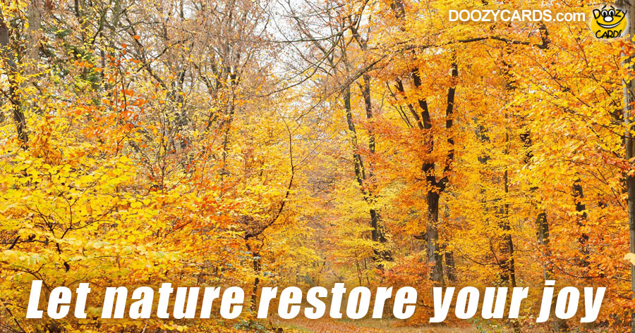 Let Nature Restore Your Joy