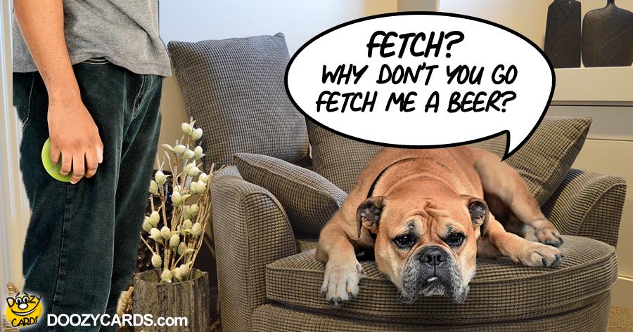 Beer Fetch